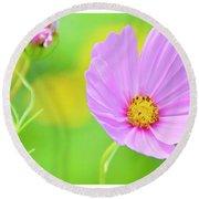 Cosmos Flower In Full Bloom, Bud Round Beach Towel