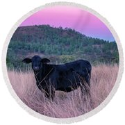 Cow Outside In The Paddock Round Beach Towel
