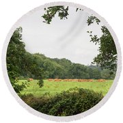 Cows In The Pasture Round Beach Towel