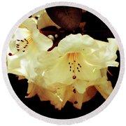 Creamy Rhododendron Round Beach Towel