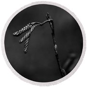 Creek Side Weed In Winter In Black And White Round Beach Towel