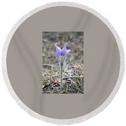 Crocus Detail Round Beach Towel