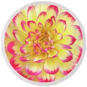 Dahlia Kenora Wow Flower Round Beach Towel