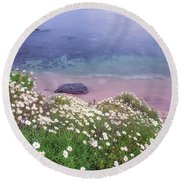 Dainty Daisies At The Cove Round Beach Towel