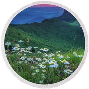 Daisies In The Mountain Round Beach Towel