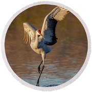 Dance Of The Sandhill Crane Round Beach Towel