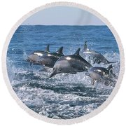 Dancing Dolphins Round Beach Towel
