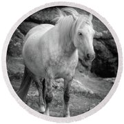 Dartmoor Pony, Black And White Round Beach Towel