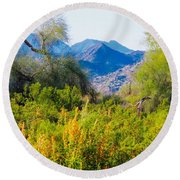 Deep Desert Valley In A Sonoran Desert Spring Round Beach Towel