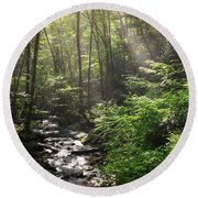 Deep In The Forrest - Sun Rays Round Beach Towel