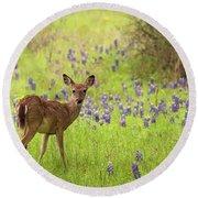 Deer In The Bluebonnets Round Beach Towel