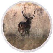 Deer In The Grasses Round Beach Towel