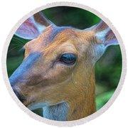 Deer Portrait Round Beach Towel