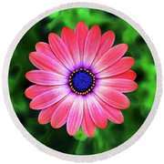 Delicate Balance Round Beach Towel