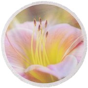 Delicate Pink Daylily Round Beach Towel