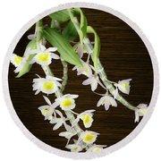 Dendrobium Primulinum Orchid-2 Round Beach Towel