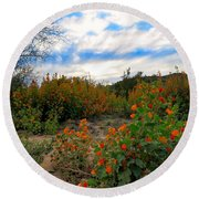 Desert Wildflowers In The Valley Round Beach Towel