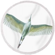 Dimorphic Egret Egretta Dimorpha Round Beach Towel