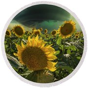 Round Beach Towel featuring the photograph Disarray  by Aaron J Groen