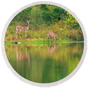 Round Beach Towel featuring the photograph Doe Reflection by Dan Sproul