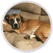 Dog Life Round Beach Towel