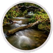Round Beach Towel featuring the photograph Dogwoods Along The Provo Deer Creek by TL Mair