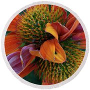 Round Beach Towel featuring the photograph Double Coneflower by Dale Kincaid