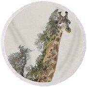 Double Exposure Giraffe Round Beach Towel