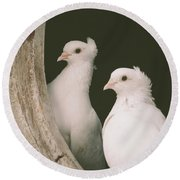 A Pair Of Doves Round Beach Towel