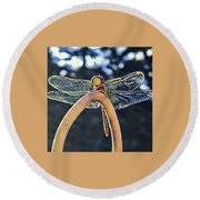 Dragonfly In The Sun  Round Beach Towel