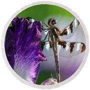 Dragonfly On Iris Round Beach Towel