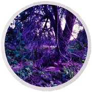 Round Beach Towel featuring the photograph Dreamy Desert Wash  by Judy Kennedy