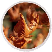 Round Beach Towel featuring the photograph Dried Autumn Leaves by Scott Lyons