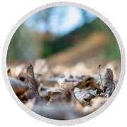 Round Beach Towel featuring the photograph Dried Leaves On The Ground by Scott Lyons