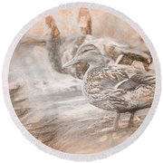 Ducks On Shore Da Vinci Round Beach Towel