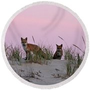 Dune Foxes Round Beach Towel