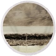 Round Beach Towel featuring the photograph Dust Of The Migration by Kay Brewer
