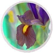 Dutch Iris Black Beauty Round Beach Towel