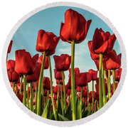 Round Beach Towel featuring the photograph Dutch Red Tulip Field. by Anjo Ten Kate