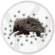 E Is For Echidna Round Beach Towel