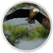 Eagle Flight 1 Round Beach Towel