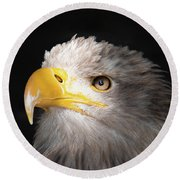 Eagle Portrait Round Beach Towel