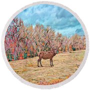 Round Beach Towel featuring the photograph East Of Kiowa by Mike Braun