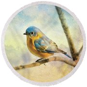 Eastern Bluebird On A Bluebird Day Round Beach Towel