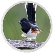 Eastern Towhee 50413 Round Beach Towel
