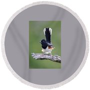 Round Beach Towel featuring the photograph Eastern Towhee 50413 by Rick Veldman