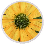 Echinacea Now Cheesier Flower Round Beach Towel