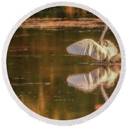 Egret Reflections 2 Round Beach Towel