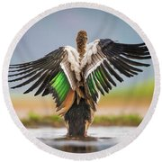Egytian Goose, Zimanga Private Game Reserves, South Africa Round Beach Towel
