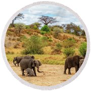 Round Beach Towel featuring the photograph Elephants Drill For Water by Kay Brewer